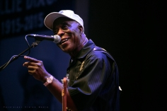 Buddy Guy | Chicago Blues Festival