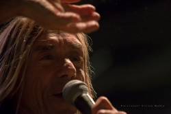 Iggy Pop performs at Riot Fest in Chicago on September 11, 2015